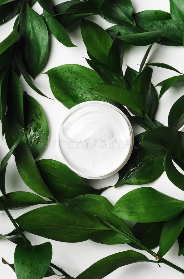 White cream in open jar top view with decorative green foliage. Organic cosmetics skincare product with natural stock image