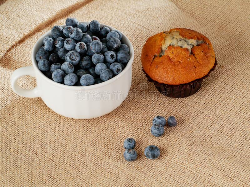 White cup with blueberries and one muffin on hessian table cloth, Country style still life stock photography