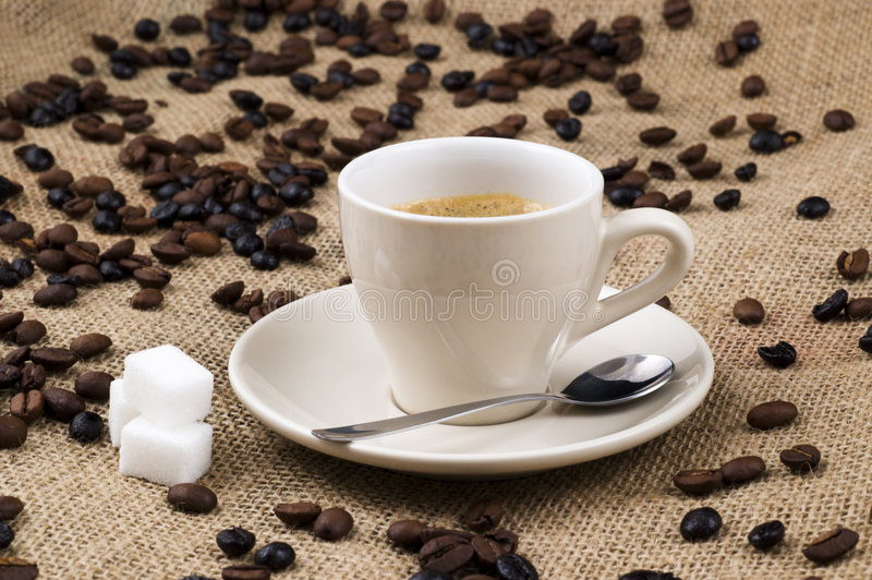 Download White cup of coffee stock photo. Image of ristretto, sugar - 4305812