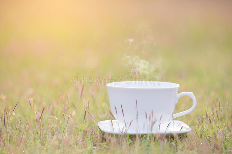 White cup of coffee stock photography
