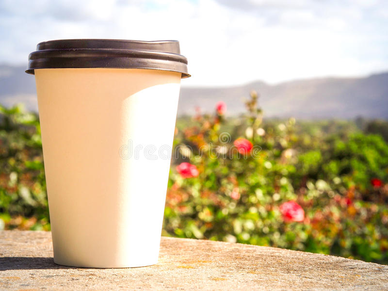 White cup of coffee put on rock table on the rose garden royalty free stock photos