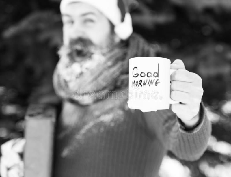White cup with good morning text in hand of handsome happy man in santa claus hat, bearded hipster with beard and. Moustache covered with frost on blurred royalty free stock images