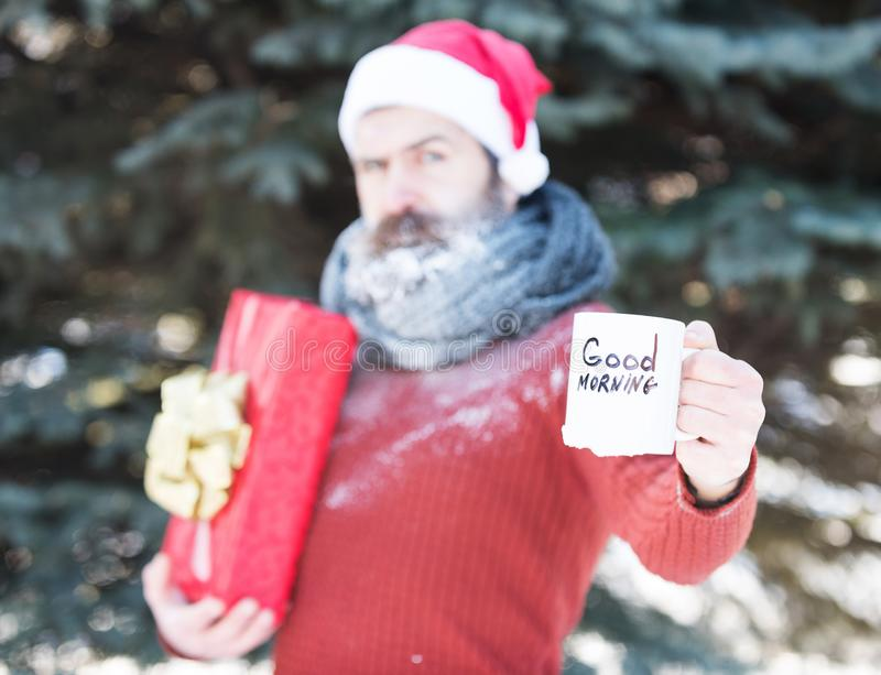 White cup with good morning text in hand of handsome man in santa claus hat, bearded hipster with beard and moustache. Covered with frost on blurred natural stock images