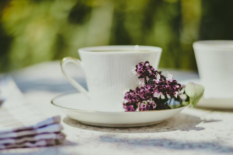 White cup of tea/coffee in summer with purple flower royalty free stock photo