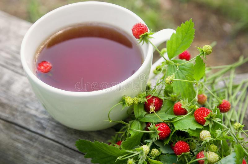 White Cup of tea and wild summer strawberries berries on the stem and green leaves on a wooden rustic background stock image