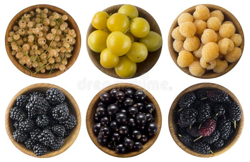 White currants, yellow raspberries, yellow plum, blackberries, black curran stock photo