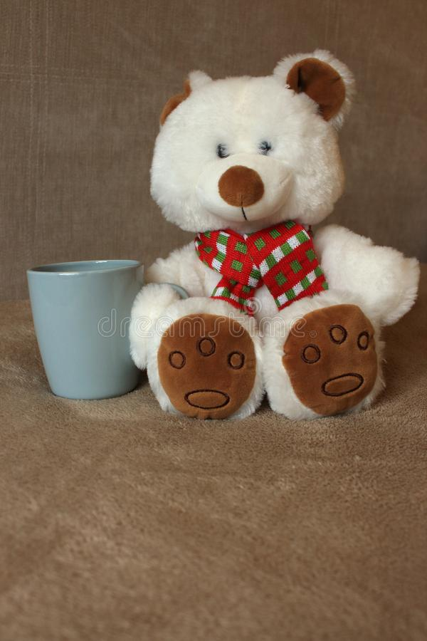 White cute teddy bear with cup sitting on sofa. Soft animal toy. Good morning concept. Childhood background. Romantic gift. Funny soft teddy bear toy royalty free stock images