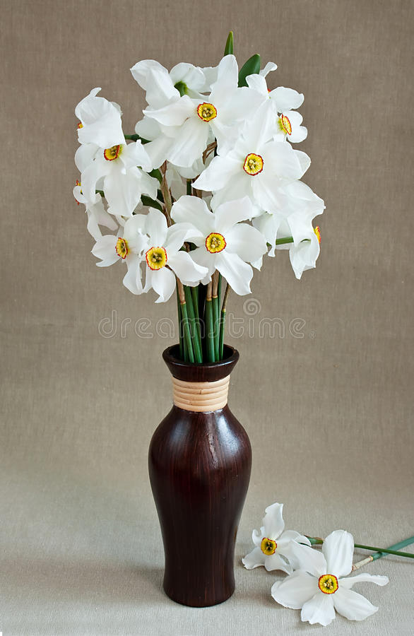 Free White Daffodils In A Vase Stock Photo - 14081890