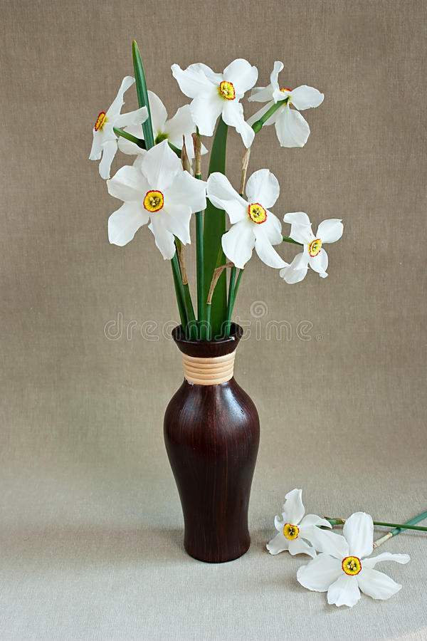 Free White Daffodils In A Vase Stock Photo - 14120570