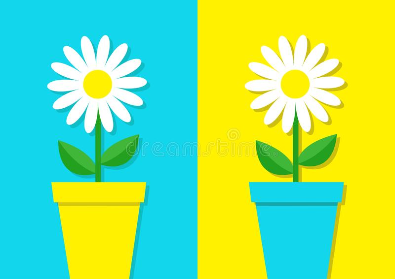 White daisy chamomile icon. Flower pot set. Cute plant collection. Love card. Camomile Growing concept. Flat design. Bright blue y. Ellow colorful background vector illustration