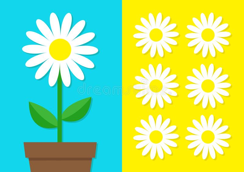 White daisy chamomile icon set. Flower pot. Cute plant collection. Love card. Camomile Growing concept. Flat design. Bright blue y. Ellow background. Template royalty free illustration