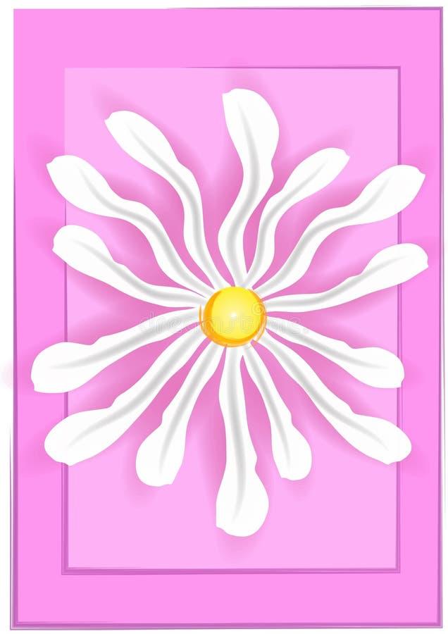 White Daisy on Pink Background royalty free illustration