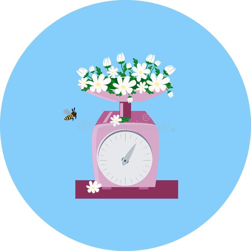 White daisy, and pink kitchen scales vector illustration