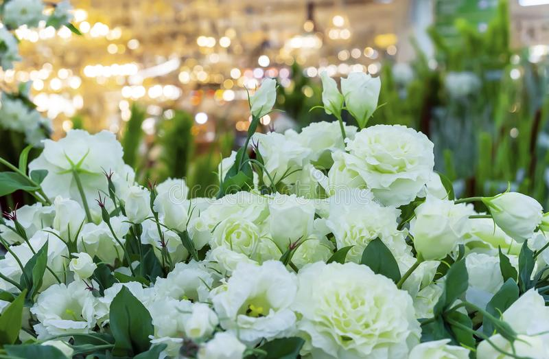 White decorative flowers on a yellow background with bokeh royalty free stock image
