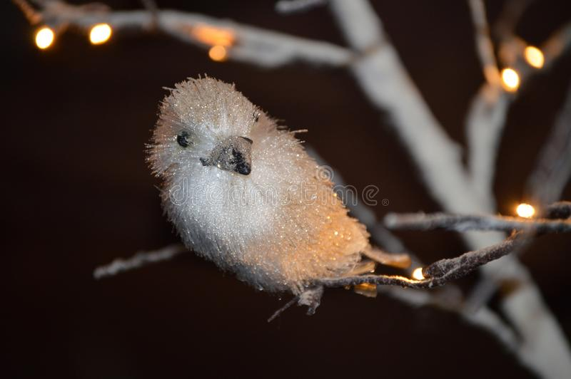 White sparkling bird perched on a tree with  Christmas lights stock photography