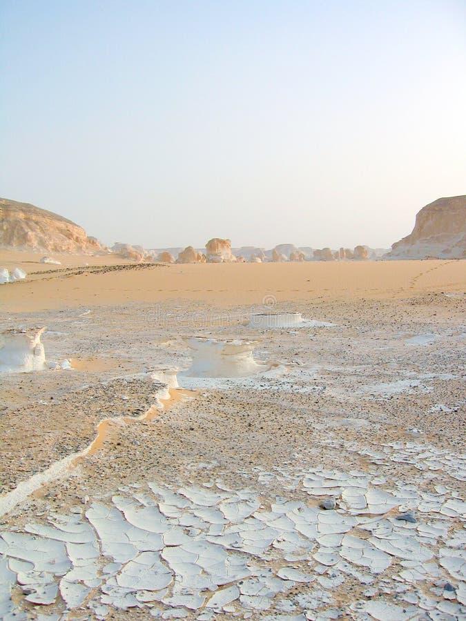 white desert obrazy royalty free