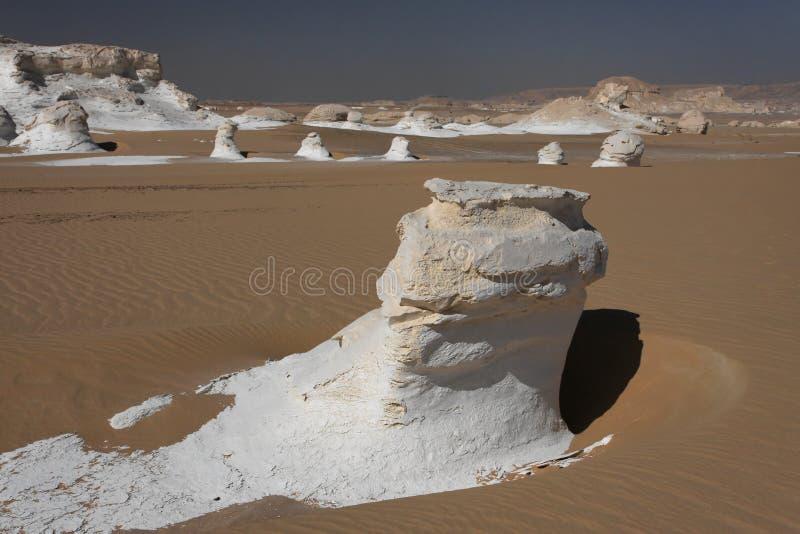 White desert landscape stock photo