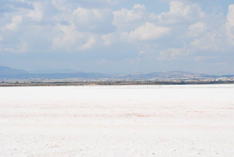 White desert royalty free stock image