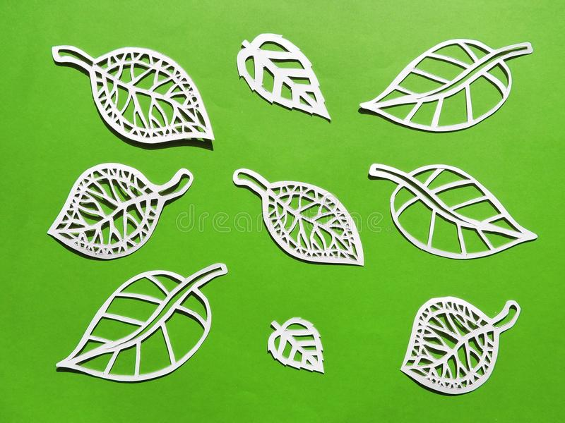 Leafs cut from white paper. White different shape leaf cut from paper on green background royalty free stock photography