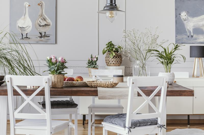 White dining room interior with posters and chairs at wooden table with flowers. Real photo royalty free stock photography