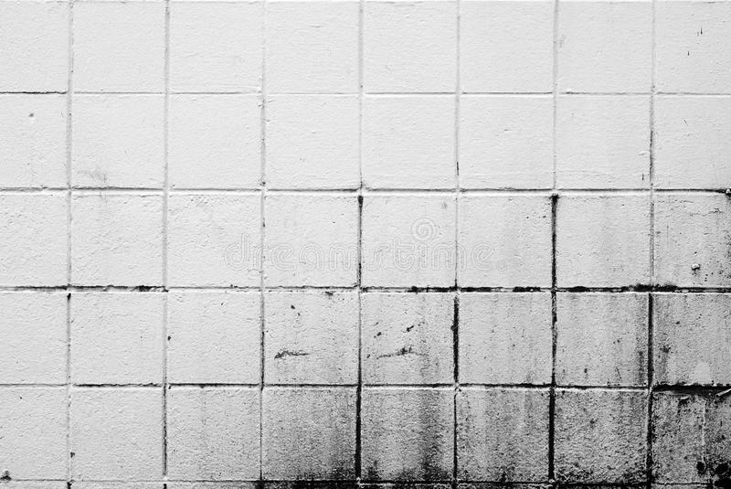 Download White Dirty Brick Wall stock image. Image of background - 14621407