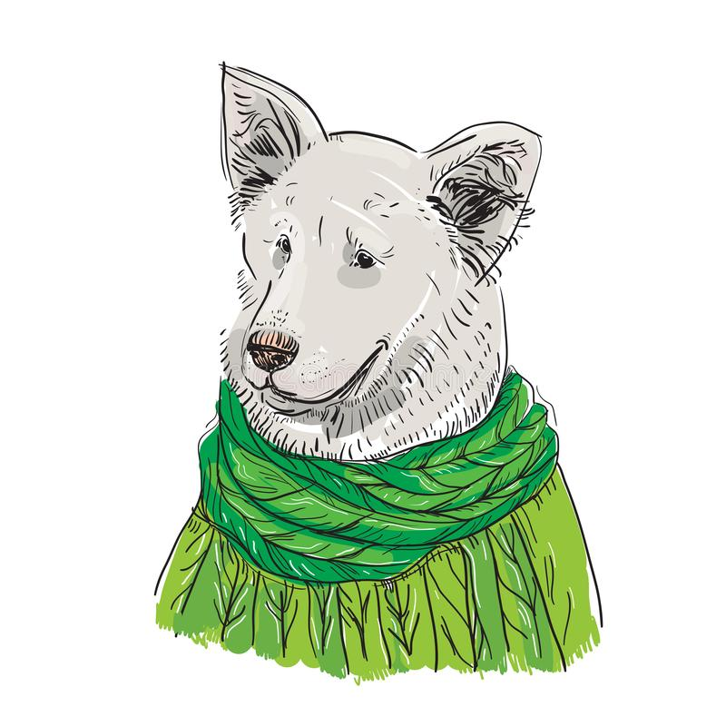 White dog in a knitted sweater and a green scarf. Shepherd. Sketch drawing. Black contour isolated on a white background. Vector. Illustration vector illustration