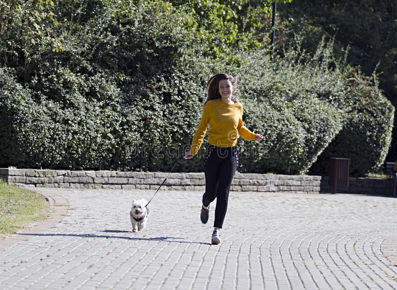 White dog and a pretty girl running at park. royalty free stock images