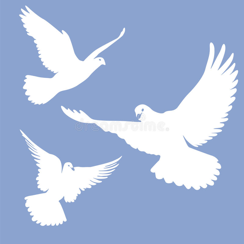 Silhouette Of A Flying Dove On A White Background Vector
