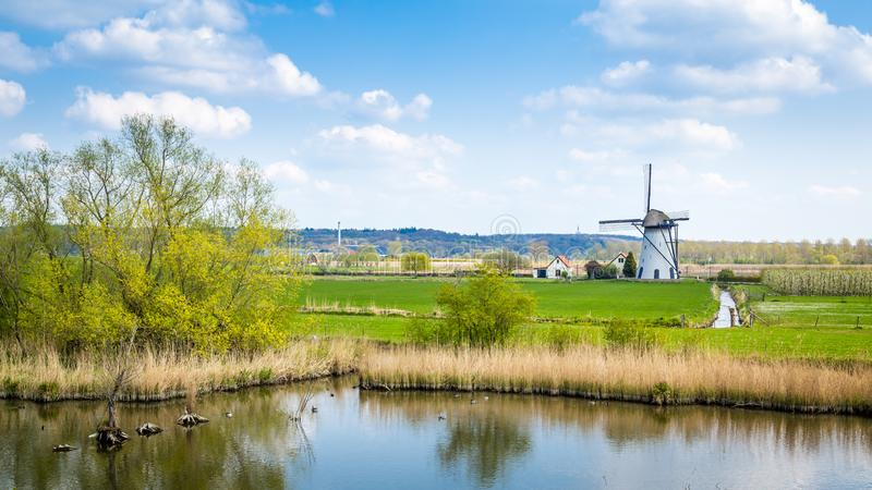 White Dutch windmill landscape. White Dutch windmill near Kesteren in Gelderland in the Netherland royalty free stock image