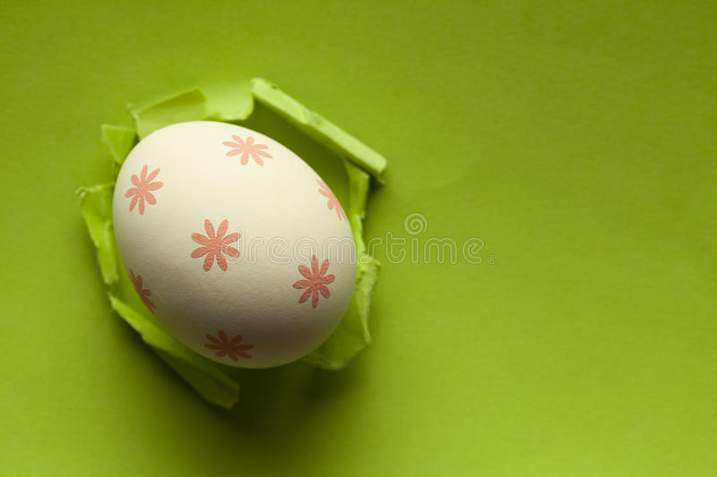 White Easter egg on green paper background royalty free stock photos