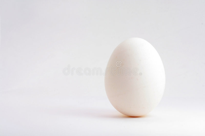 White egg. Close up shot royalty free stock photography