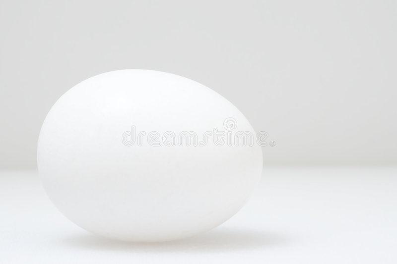 White egg. On white background stock photography