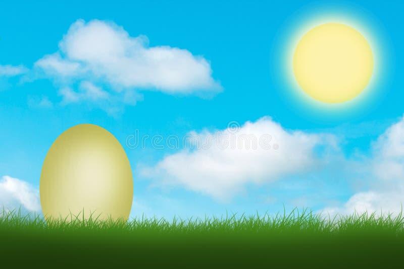 White egg in green grass stock images