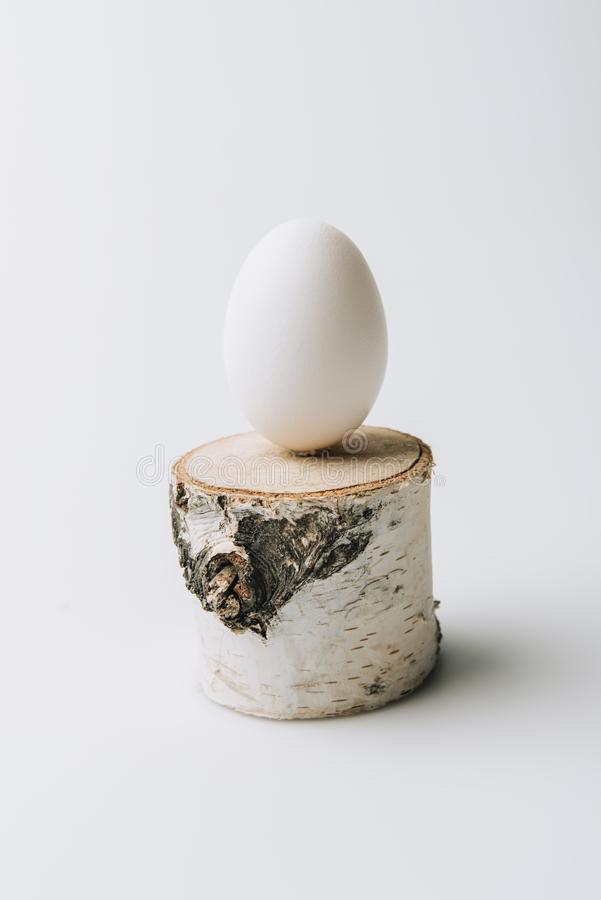 White egg laying on wooden stump. On white background royalty free stock photo