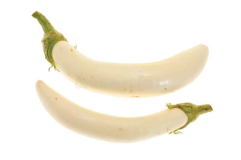 White Eggplants Royalty Free Stock Photography