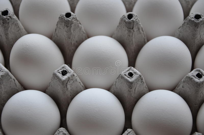 White eggs. White chicken eggs on tray royalty free stock images