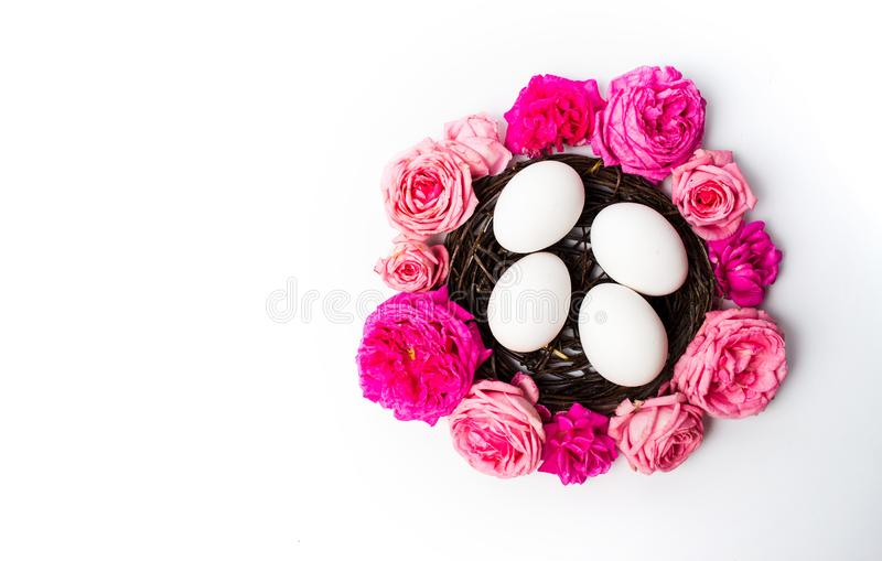 White eggs with fresh roses stock image