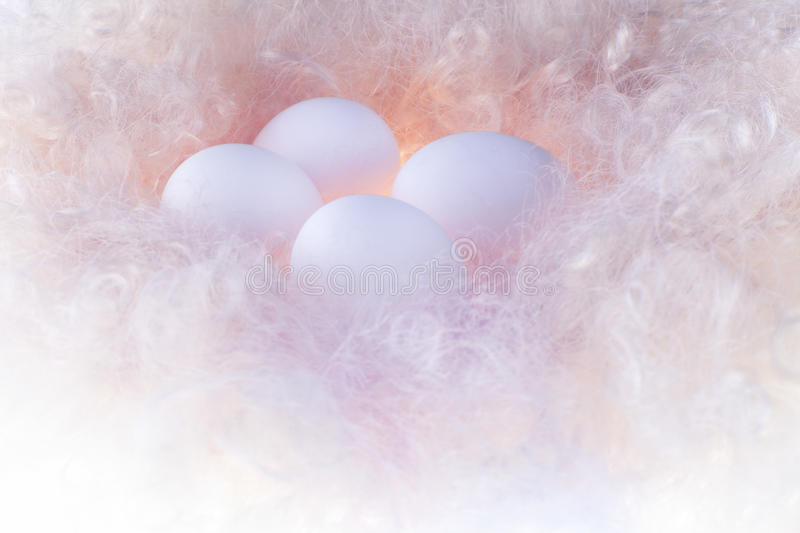 Download White Eggs In The Gentle Light On A Lining Stock Image - Image: 29027831