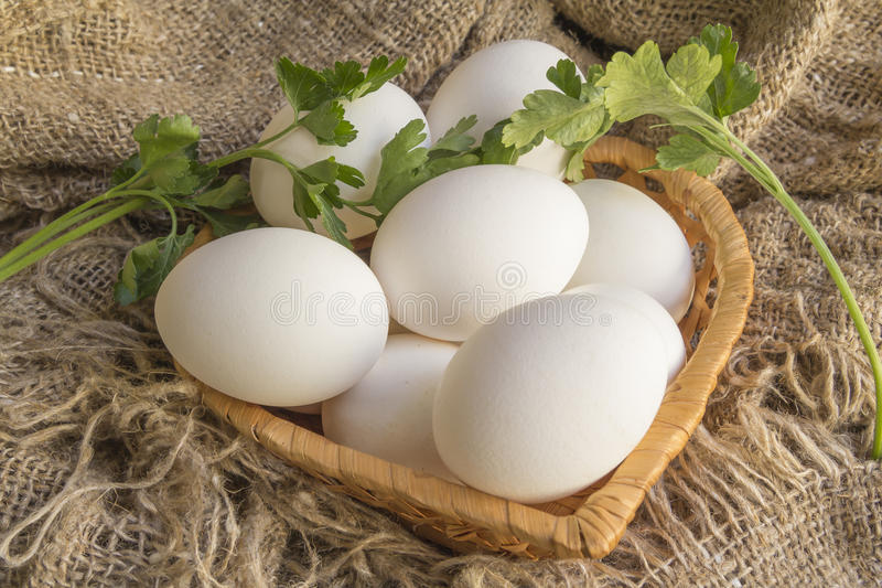 White eggs in a straw plate. Against the background of the canvas stock images