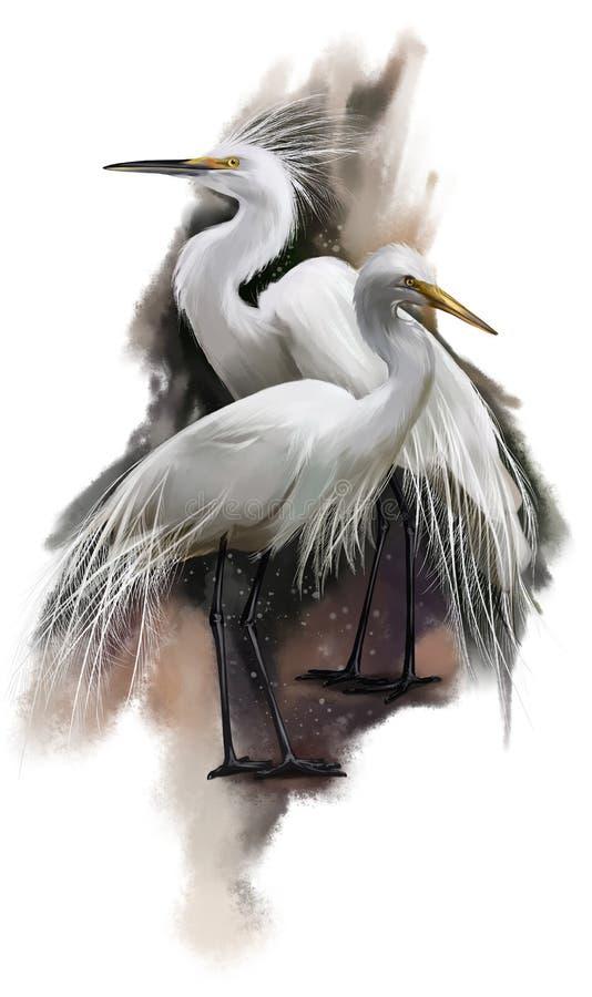 White Egret watercolor painting stock illustration