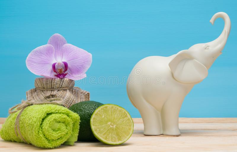 White elephant and spa items on the table stock photography