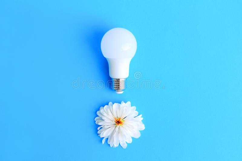 White energy saving light bulb and white flower on a blue background stock photos
