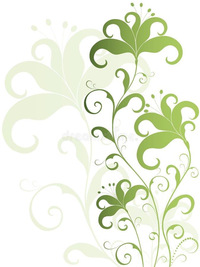 white för bakgrundsblommagreen vektor illustrationer