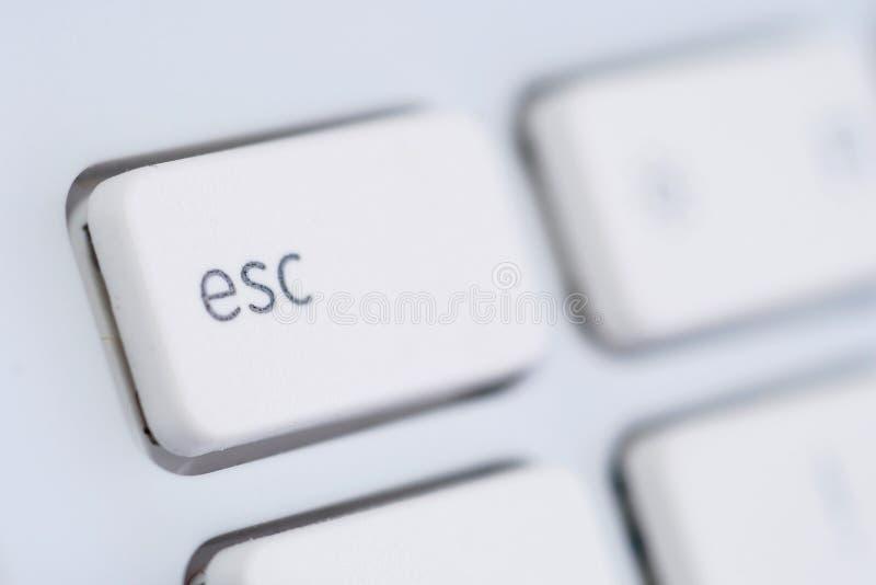 Download White För Datoresc-tangentbord Arkivfoto - Bild av knapp, laptop: 3548184