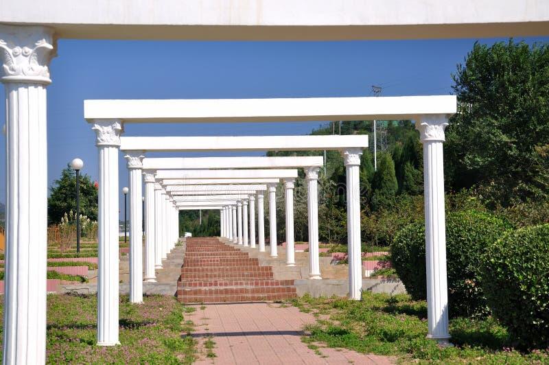 white för korridorramträdgård royaltyfri fotografi