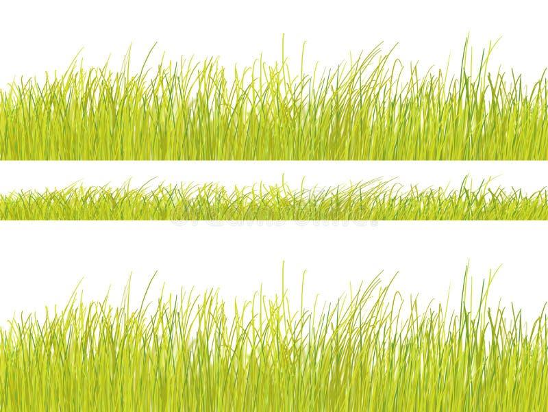 white för modell för bakgrundsgräsgreen vektor illustrationer
