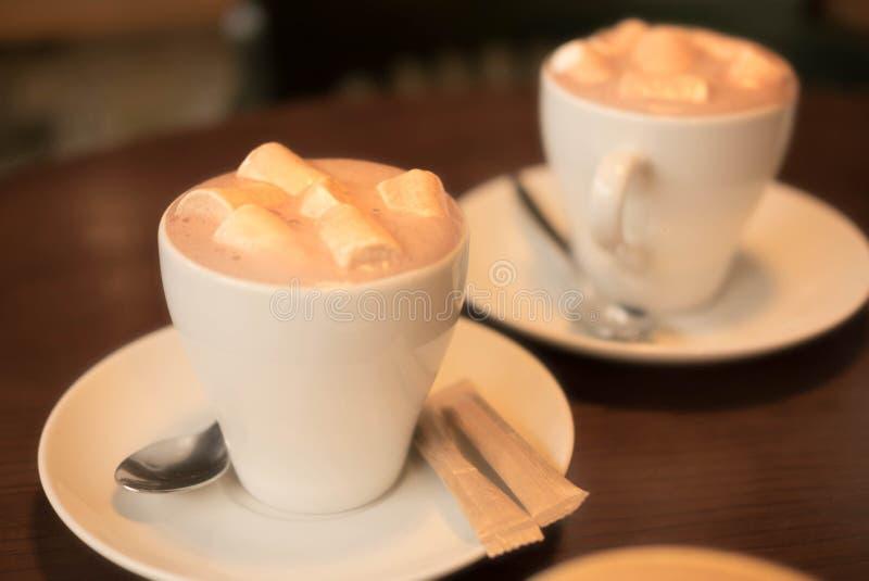 white för morgon för kappa för flicka för dressing för kaffekopp royaltyfria bilder