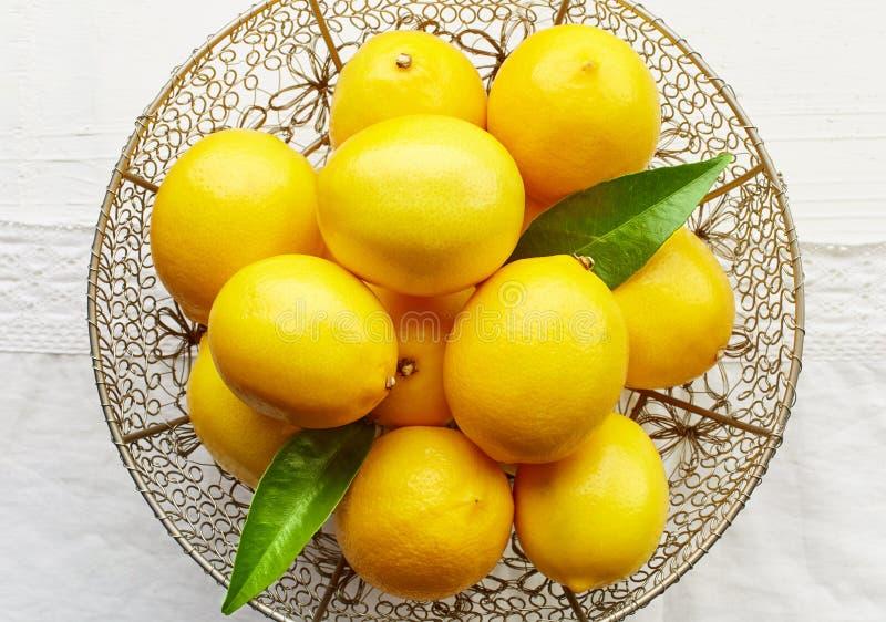 white för nya citroner för bakgrund mogen royaltyfri bild