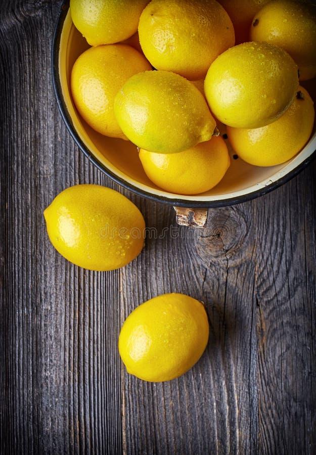 white för nya citroner för bakgrund mogen royaltyfri foto