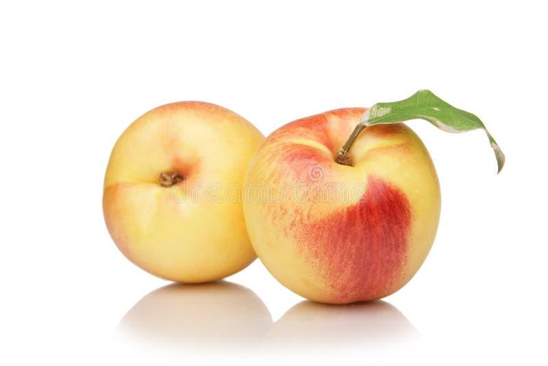 white för persika för bakgrundsfruktnektarin royaltyfria foton